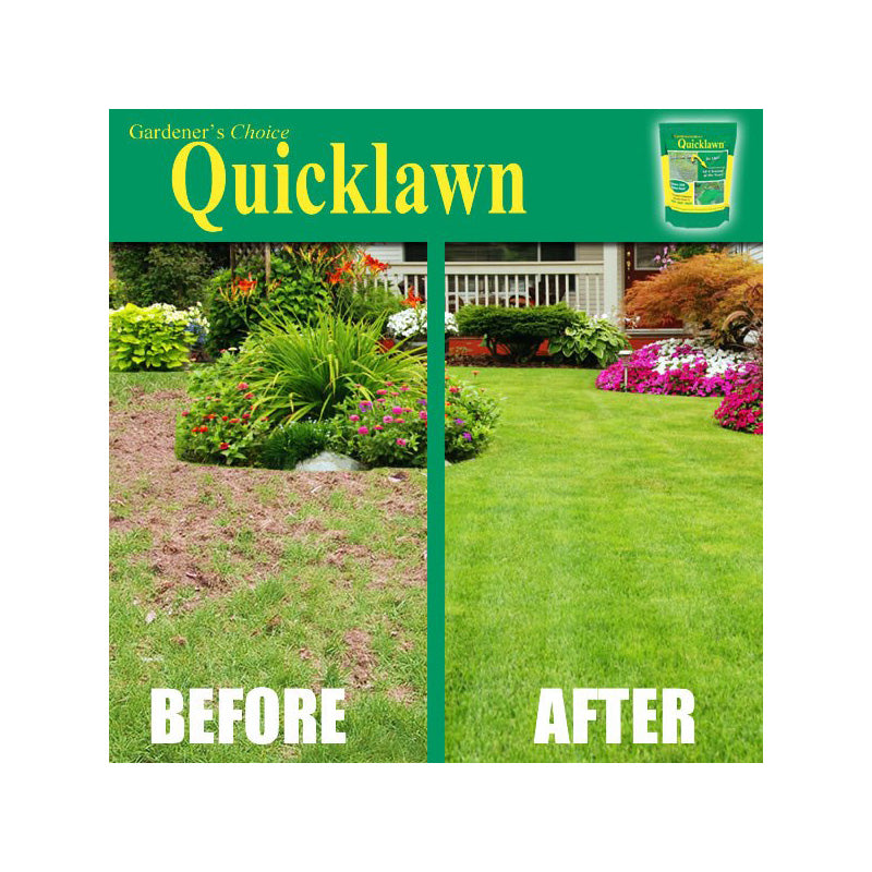 As Seen On TV Quicklawn 4 Season Evergreen Grass Seed - 1 Lb Bag (500 Sq. Ft)