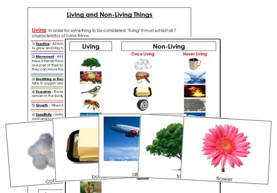 Living & Non-Living Cards and Chart - Montessori Print Shop printable science materials