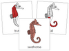 Seahorse Nomenclature Cards (red) - Montessori Print Shop
