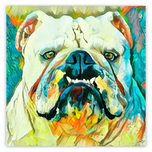 Bulldog With An Attitude