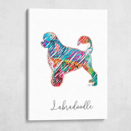 Color Wire Labradoodle