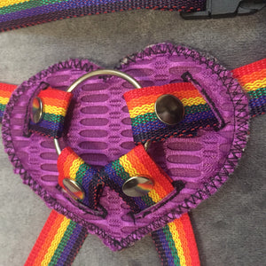 Heart base rainbow strap on harness