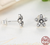 Silver Sterling Dazzling Daisies Sparkling Earrings