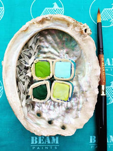 Healthy Forest Shell Watercolor Gift Set