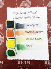 Painted Turtle Shell Watercolor Gift Set