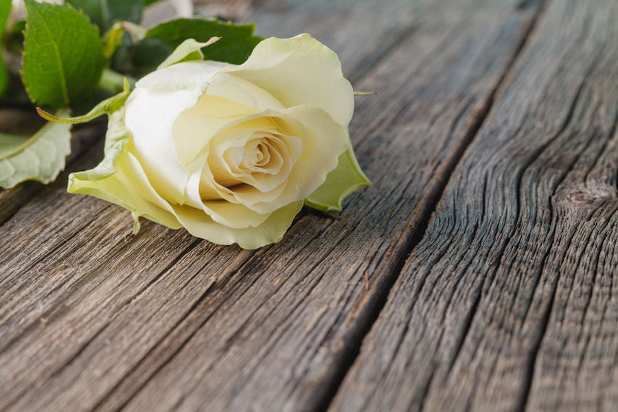 Funeral Flowers and other Expressions of Sympathy