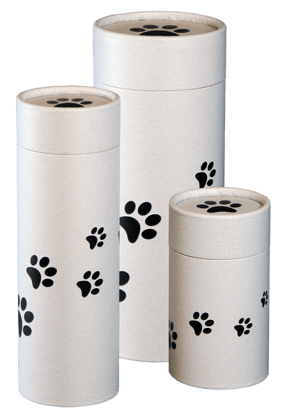 Precious Paws Design Eco-Friendly Scattering Tube - Pet, Medium - Cherished Urns