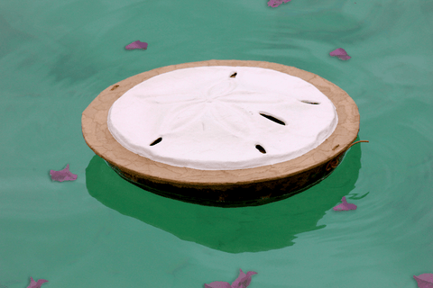 Serenity Sand Dollar Water-soluble Urn - Cherished Urns