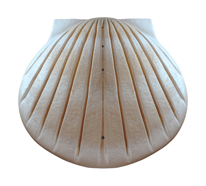 The Shell Water-soluble Hand-made Paper Urn in Pearl colour - Cherished Urns