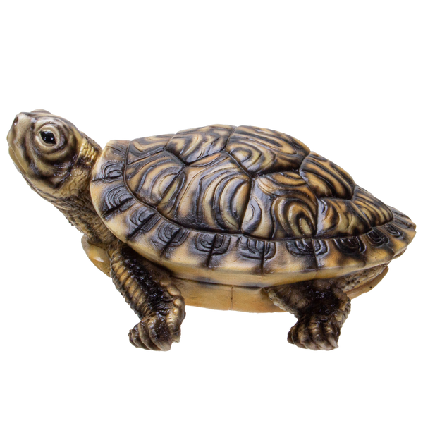 Realistic Yellow Belly Turtle Resin Figurine