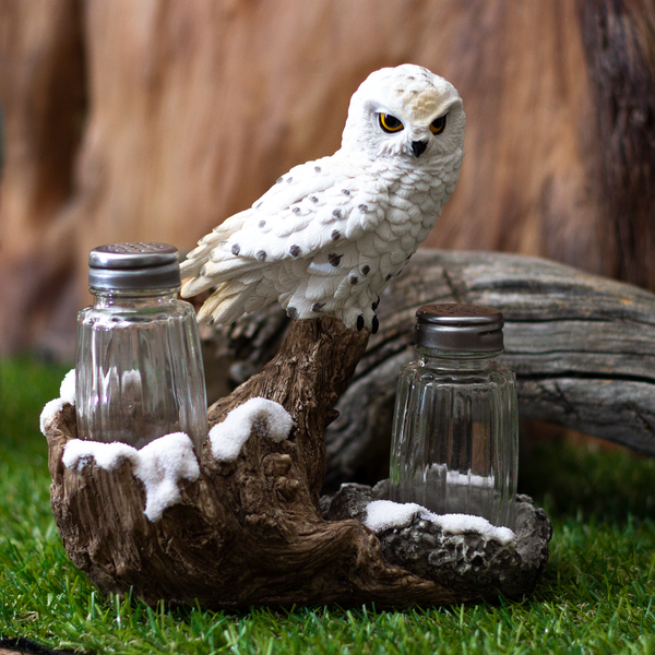 Snowy Owl Perching On Tree Branch Spiritual Realistic Decorative Glass Salt and Pepper Shakers Set with Resin Holder