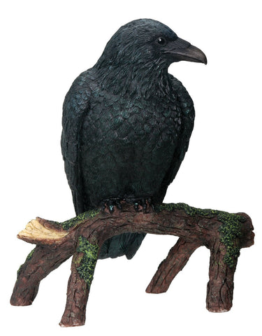 YTC Raven - Collectible Figurine Statue Sculpture Figure Crow Bird Model