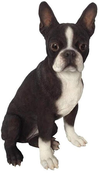 Hi-Line Gift Ltd. Boston Terrier Dog Garden Statue