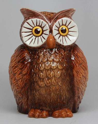 PTC 6 Inch Owl Bird Savings Piggy/Coin/Money Bank, Brown and White
