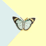 Widespread Forester Butterfly Enamel Pin
