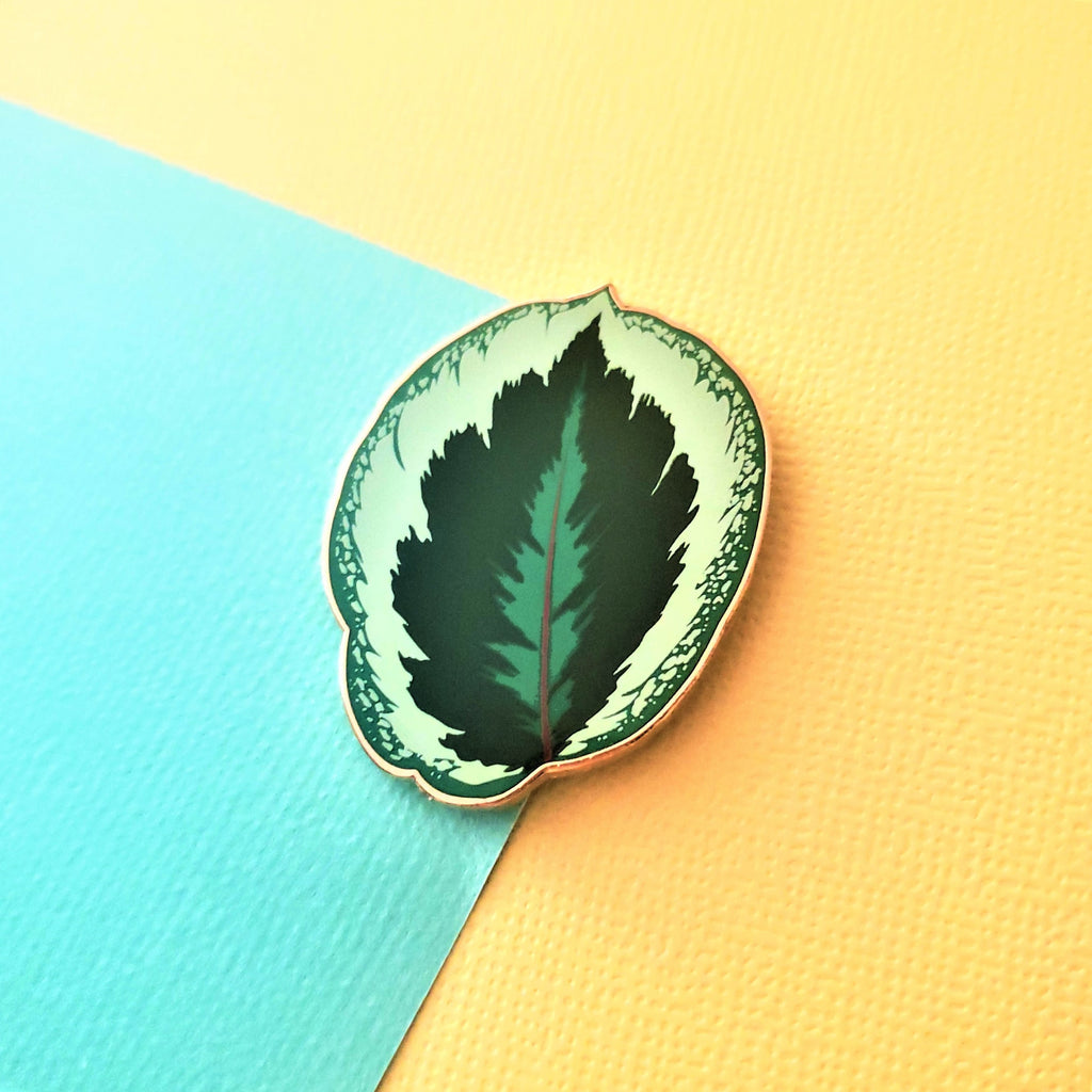 Calathea Medallion Pin
