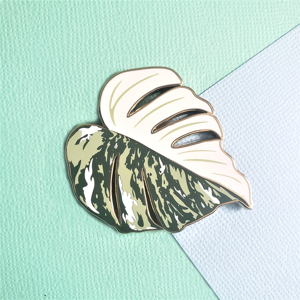 Variegated Monstera 'Thai Constellation' Pin