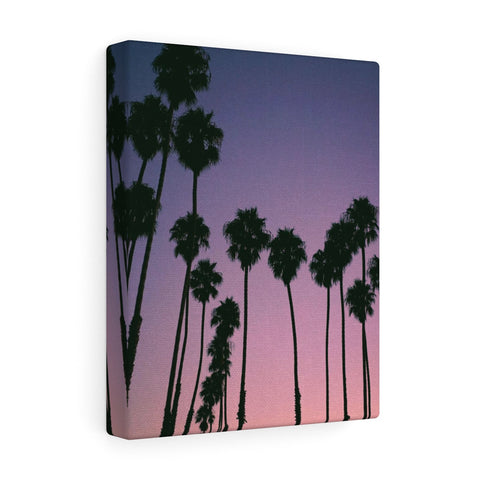 Santa Barbara Palm Trees Premium Wall Canvas