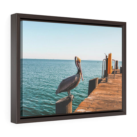 Santa Barbara Pelican Premium Framed Wall Canvas