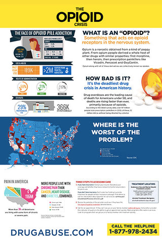 24x36 The Opioid Crisis Treatment Poster
