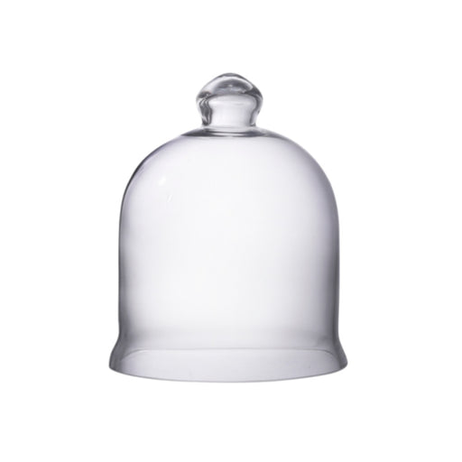 Medium Glass Bell Jar