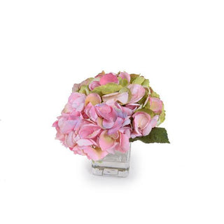 Individual Product - BLUSH-GREEN HYDRANGEA CUTTING IN GLASS VASE
