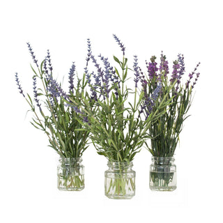 Individual Product - SET OF THREE LAVENDERS IN GLASS VASE 12""