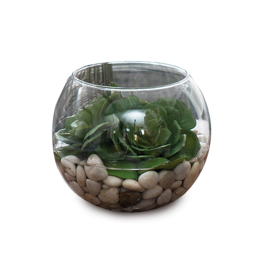 Individual Product - SUCCULENT ARRANGEMENT WITH STONES IN GLASS BOWL