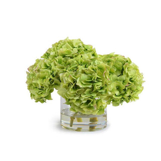 Individual Product - TRIPLE GREEN HYDRANGEA IN GLASS VASE 13""