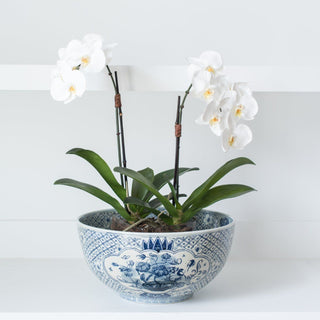 Sets - EASTON 2 PC SET <br>Blue & White Painted Ceramic Bowl, Orchid