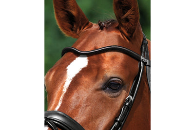 Passier Waved Round Leather Browband
