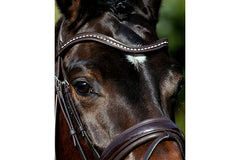 Passier Waved Browband with Strass Bullions