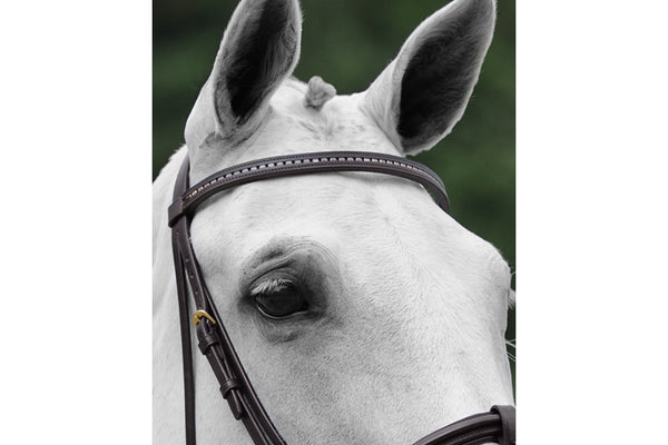 Passier Browband with Strass Bullions