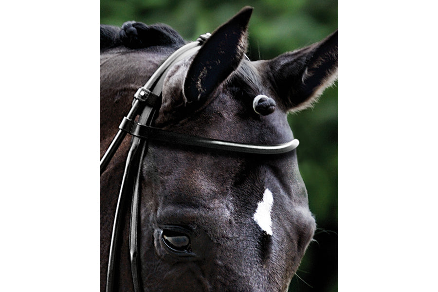 Passier Round Browband
