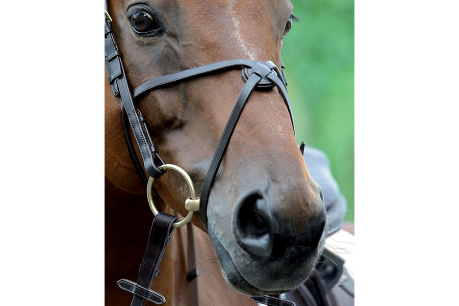 Passier Exchangeable Figure 8 Noseband