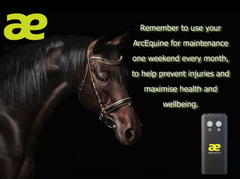 Arc Equine Therapy System Kit