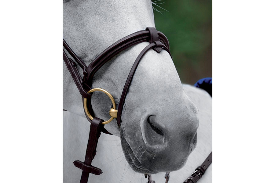 Passier Flash Noseband with Removeable Flash Loop