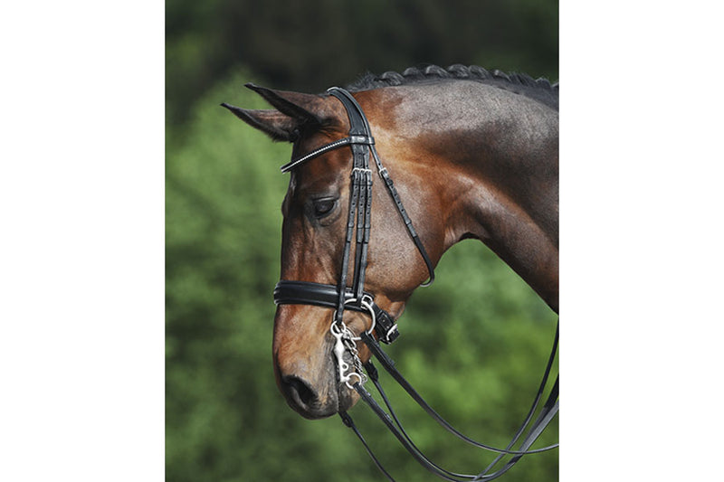 Passier Fortuna Double Bridle