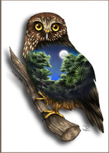 Native Bird Print - Morepork