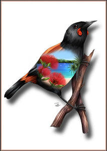Native Bird Print - Saddleback