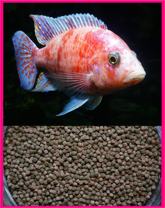 GOURMET CICHLID ULTRA & VEGGIE PELLET MIX 2.0mm