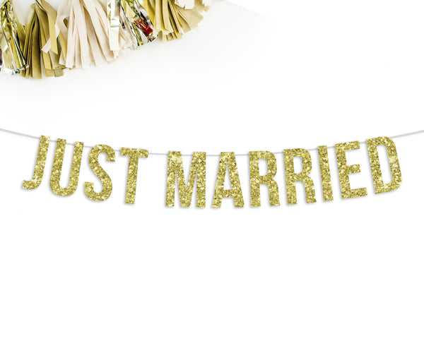 JUST MARRIED Party Banner-The Wedding Haus
