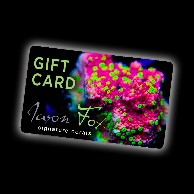 Gift Card - 10% discount applied at checkout