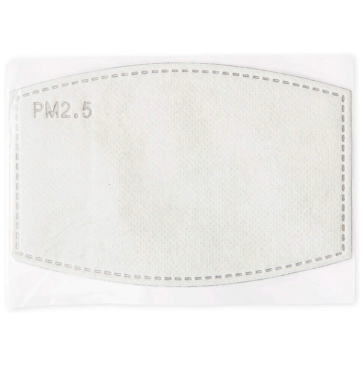 Face Mask Filter PM 2.5 - 10 pack