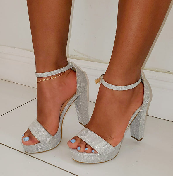 Elegant Silver Shoes