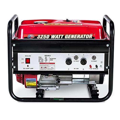 3250 Watt Gas Powered Generator