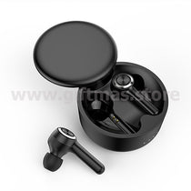 Wireless Earbuds (W13)