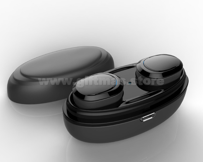 TWS Earbuds with Charger Case
