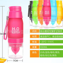 Fruit Infuser Plastic Water Bottle
