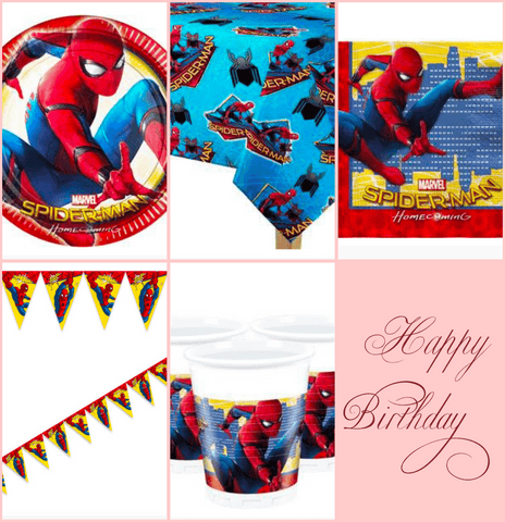Small Spider-Man Party Kit for 8 Guests
